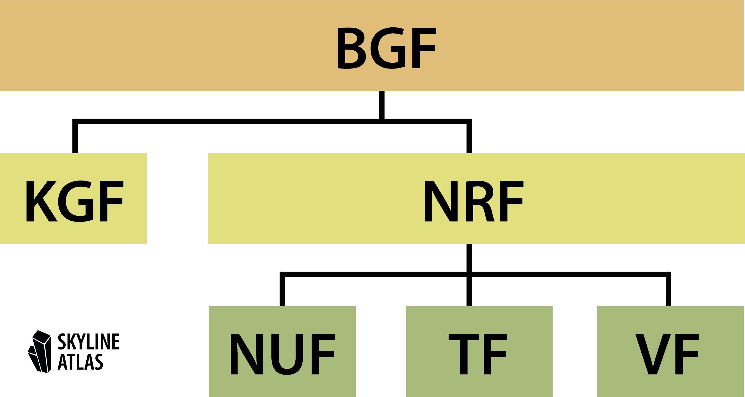 BGF Definition - Struktur und Aufbau der Bruttogrundfläche im Vergleich zu KGF, NRF, NUF, TF und VF