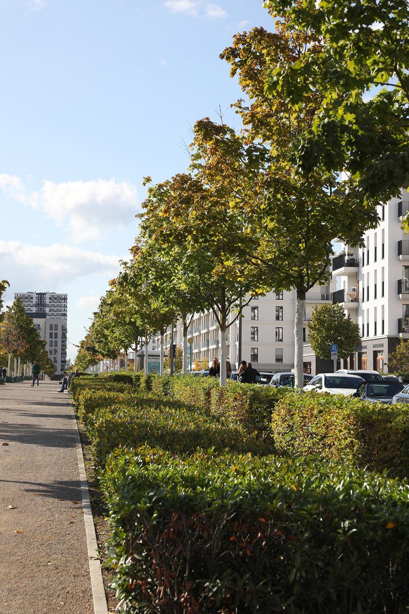 Wohnen in grün - Frankfurt Europaviertel
