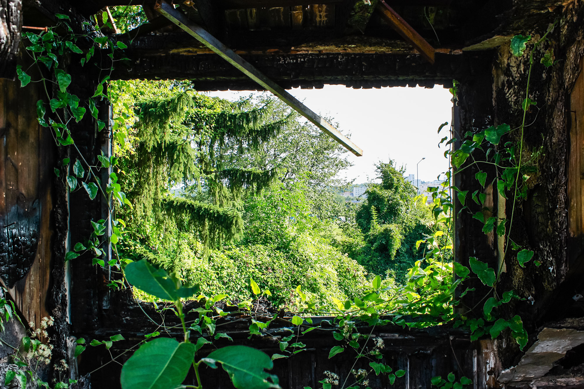 Ruine Gewerbegebiet 1 , Kaiserlei , Offenbach , Leerstand , Konversionsfläche